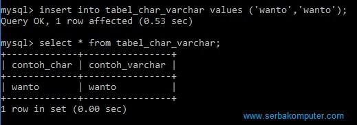 tipe data string pada MySQL